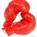 1910R Boxing Gloves
