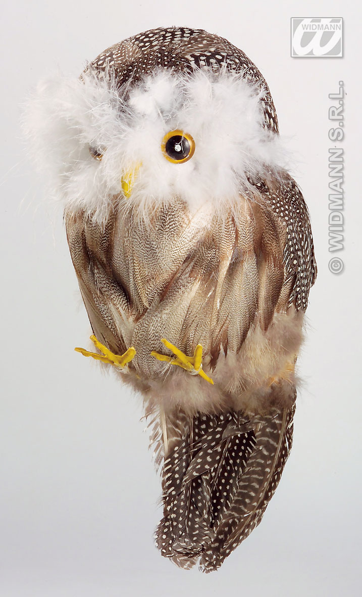 3064H Feathered Owl