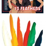3303P Indian Feathers