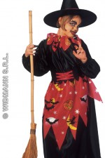 38927 Witch Costume