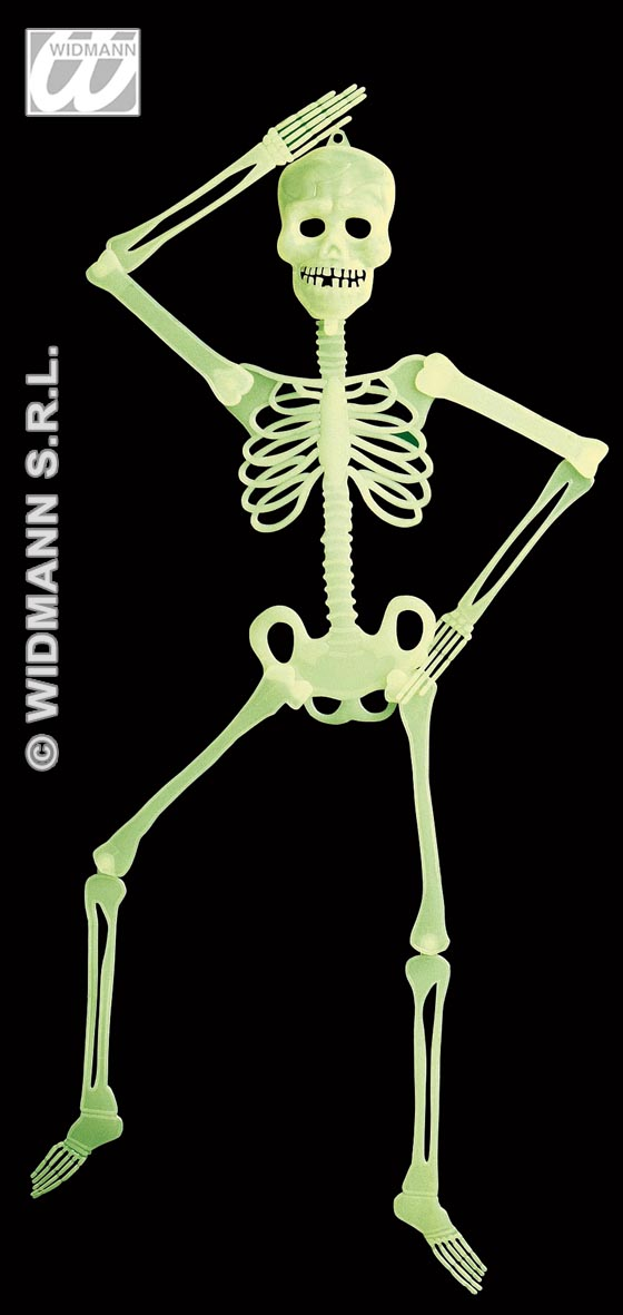 5219W Glow In The Dark Skeleton