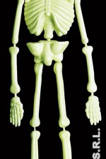 5228S Glow In The Dark Lab Skeleton