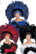 6607C Feathered Brazilian Headdress