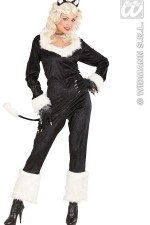 73182 CatWoman