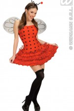 77313 Ladybird dress