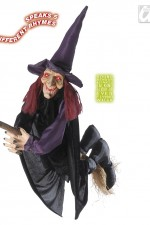 7876E Talking witch on broom