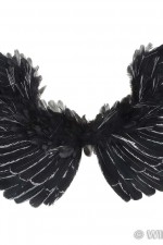 8654A Black Feathered Wings