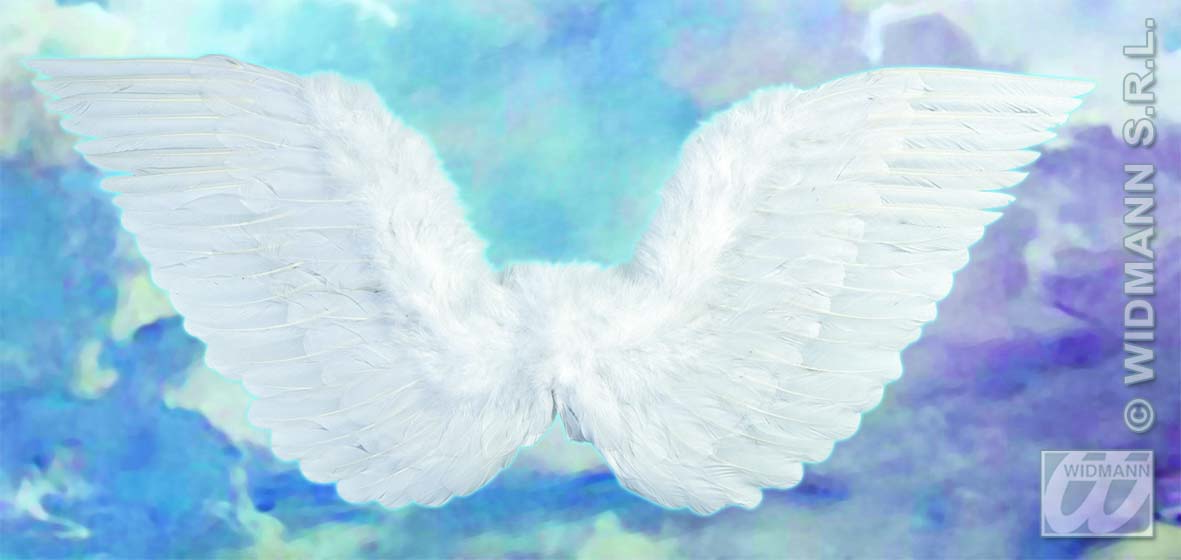 8670A White Feathered Wings