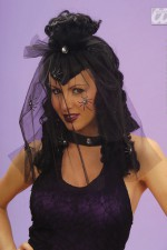 Q6336 Black Wig With Veil and Spiders