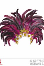 11798 Feather headress