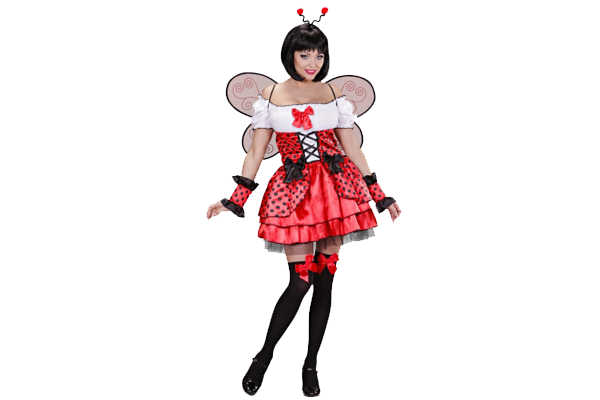 05452 Ladybug