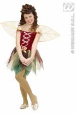 12996 Fairy