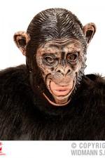 00425 Monkey Mask