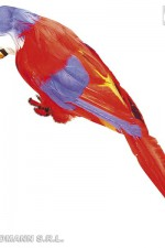 30741 Red parrot
