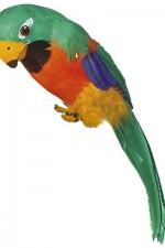 30742 Green parrot
