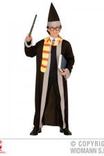 01147 Boy wizard