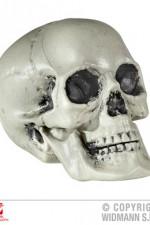 01379 PVC Skull