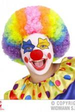 74590 Clown wig child size