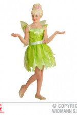 05796 Fairy