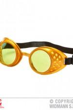 01787 Steampunk Goggles
