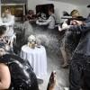 Splurge gun party